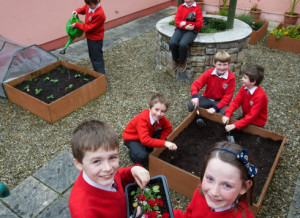Gardeners; Evan Forde and Ciara Hurley, front, with Jamie Grace, Conor Hayes, Eanna Corry, James Fitzpatrick, and Oran MC Namara in the garden at Inch N.S. Photograph by John Kelly.