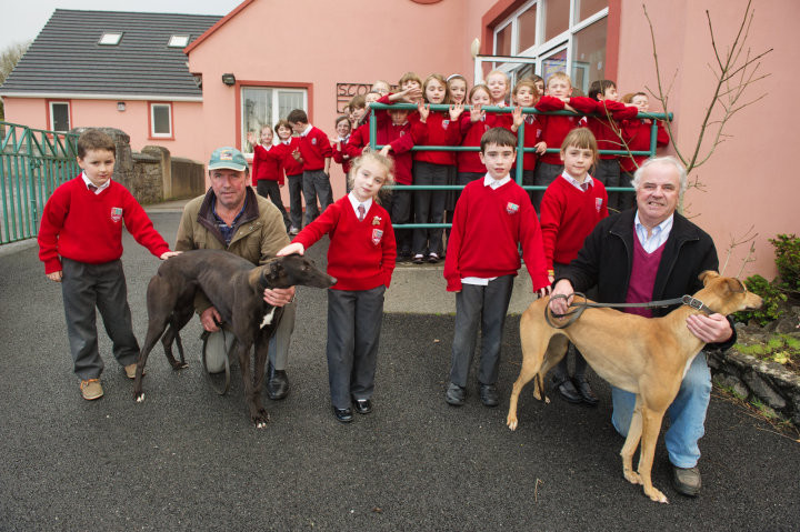 """Pupils Garett Harvey, Judith Egan, Shane Frawley and Emma Neylon with Johnny and Michael Maher and their dogs """"Clonfeigh Rose"""" and """"Giddy Up Lady"""" at the launch of the forthcoming Night At The Dogs which runs in Limerick Greyhound Track on January 31st in aid of Inch National School. Photograph by John Kelly."""