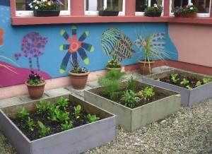 Our School Garden-8