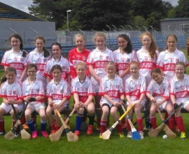 Inch Camogie 2016