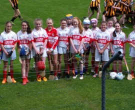 CAMOGIE 2016